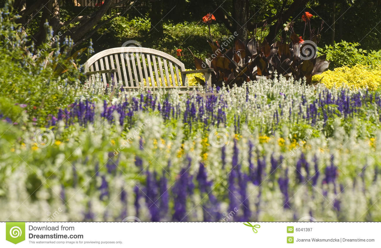 Summer Park Bench In A Garden Flowers Plants Royalty