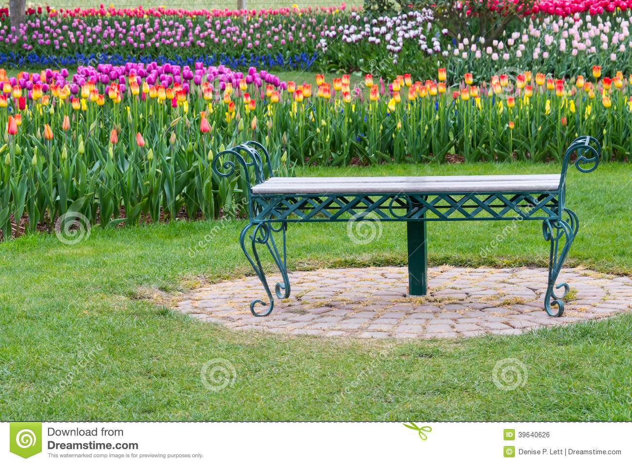 Park Bench In Tulip Flower Garden Stock Photo - Image of natural ... for Park Background With Bench  177nar