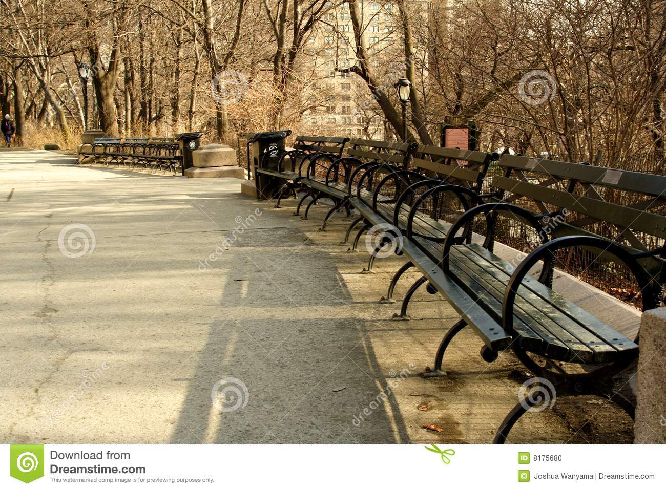 Park Benches Stock Photo Image 8175680