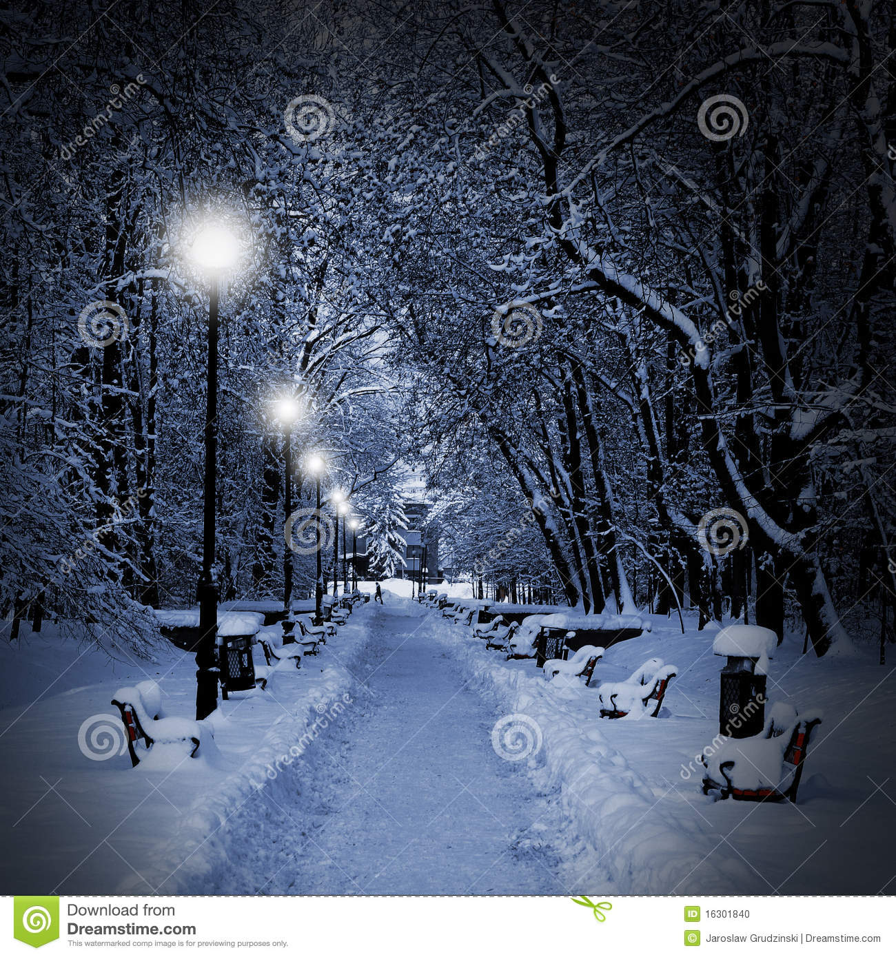 Park Covered With Snow At Night Stock Photo Image 16301840
