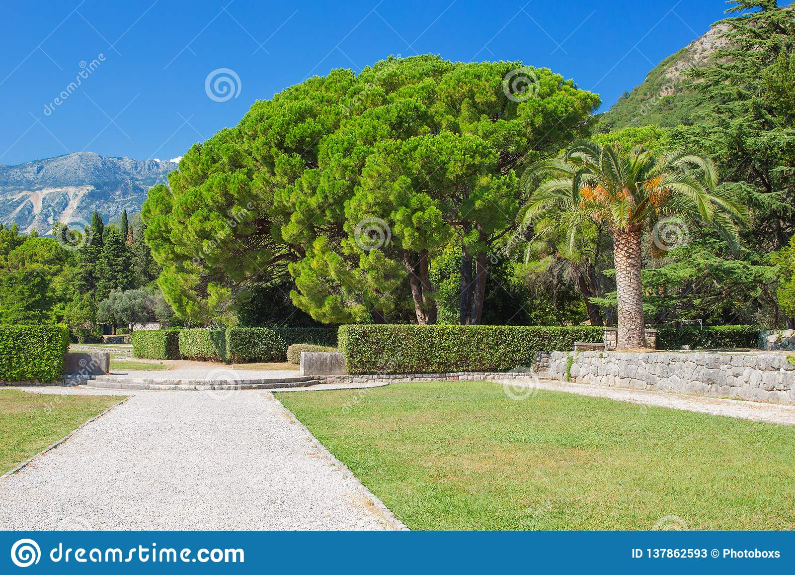 Park green area with a path of rubble and a lush variety of vegetation and mountains in the background