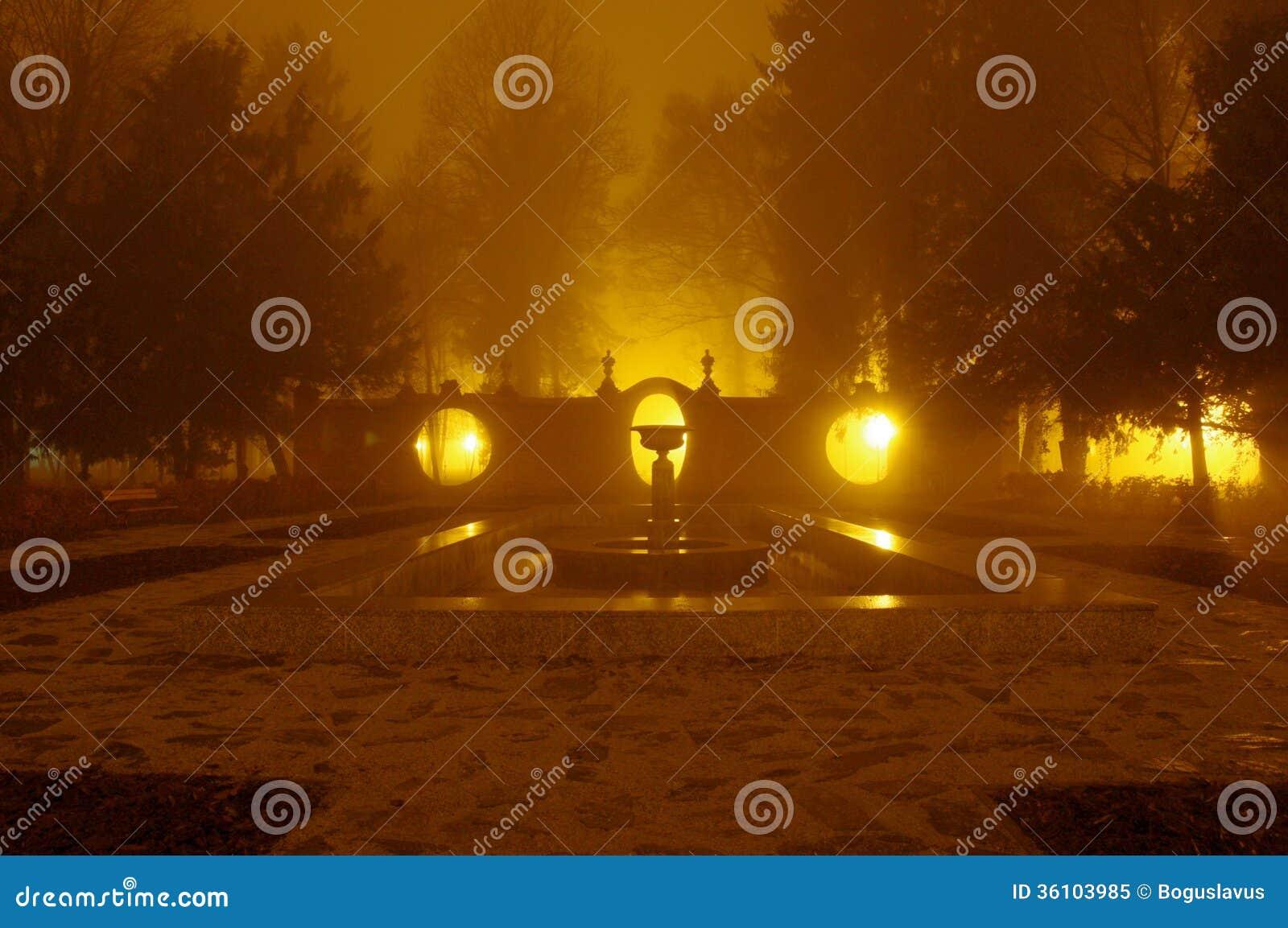 Park at night.