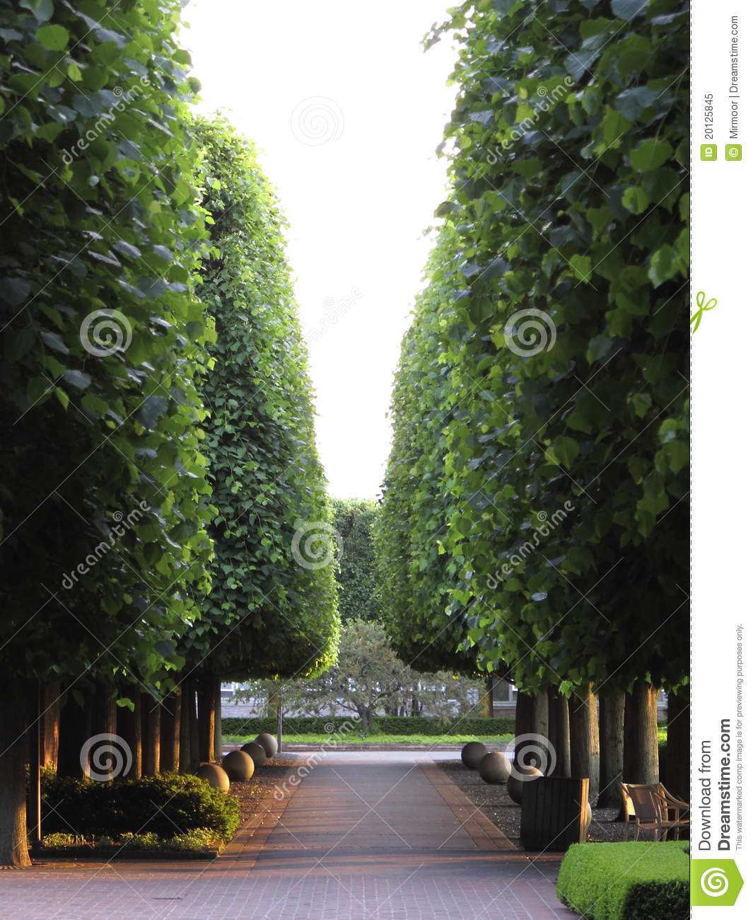 Park Pathway In Botanic Garden Stock Image Image Of Garden Outdoor 20125845