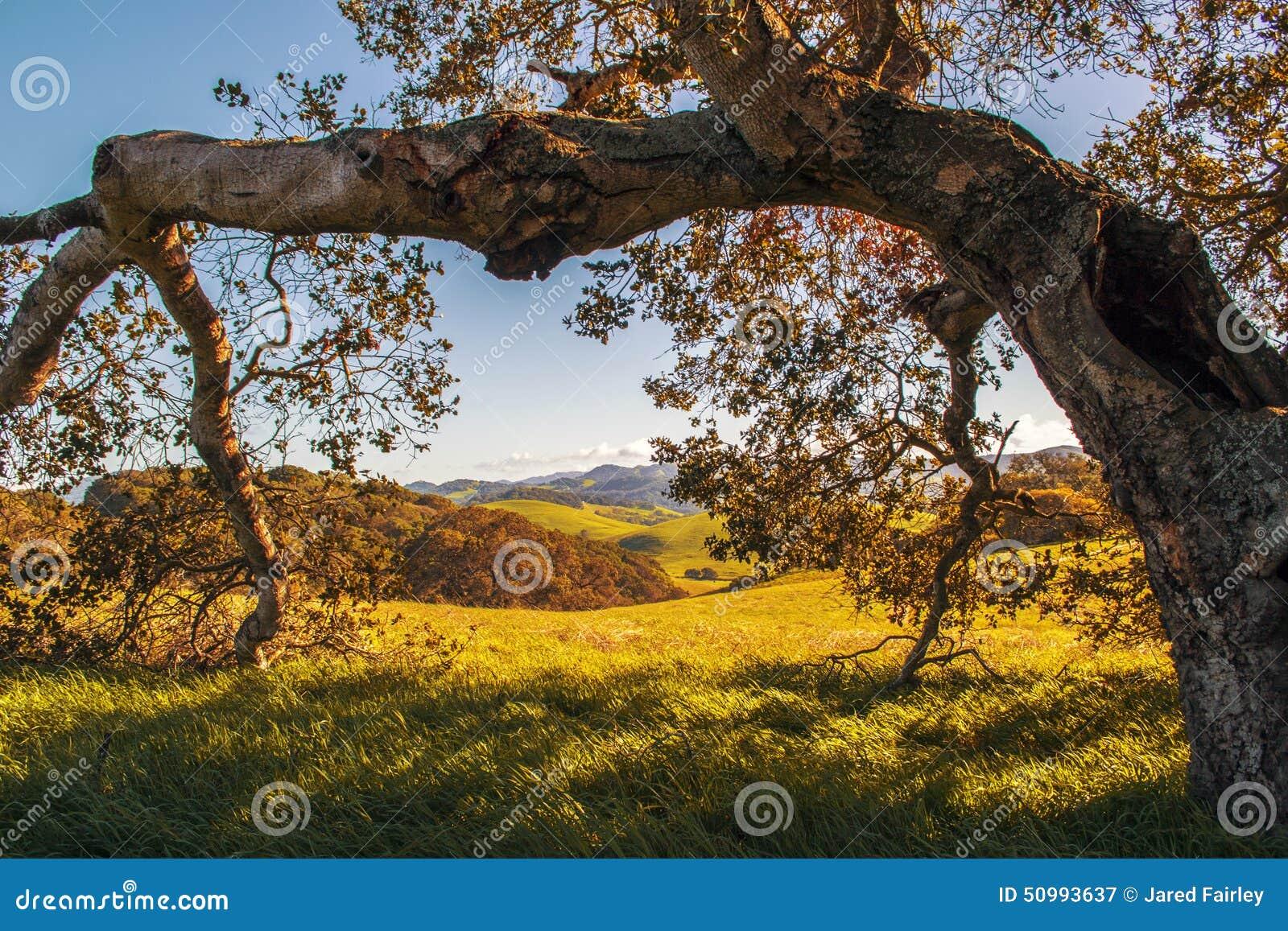 Park in Sonoma-Provincie