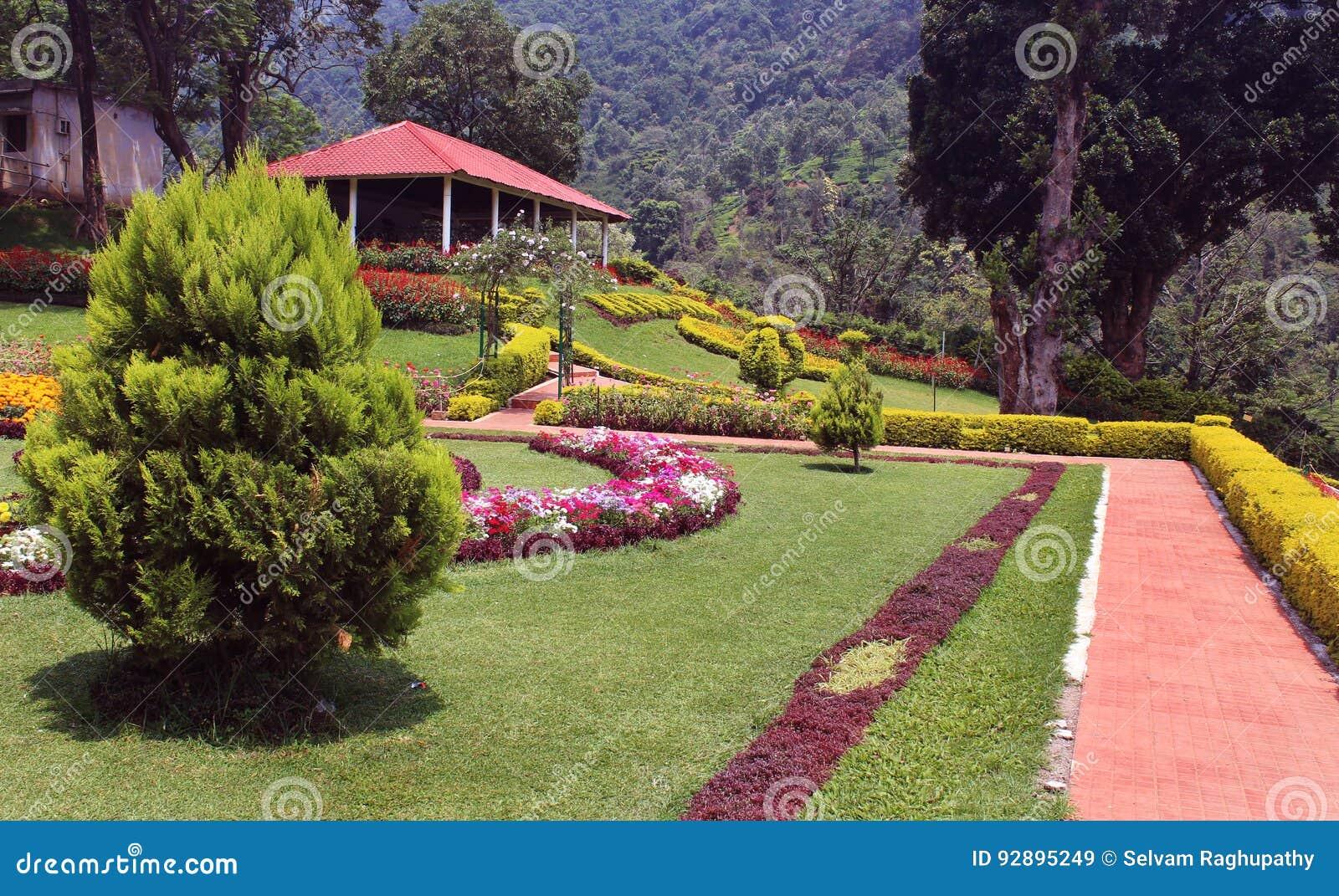 Park veiw
