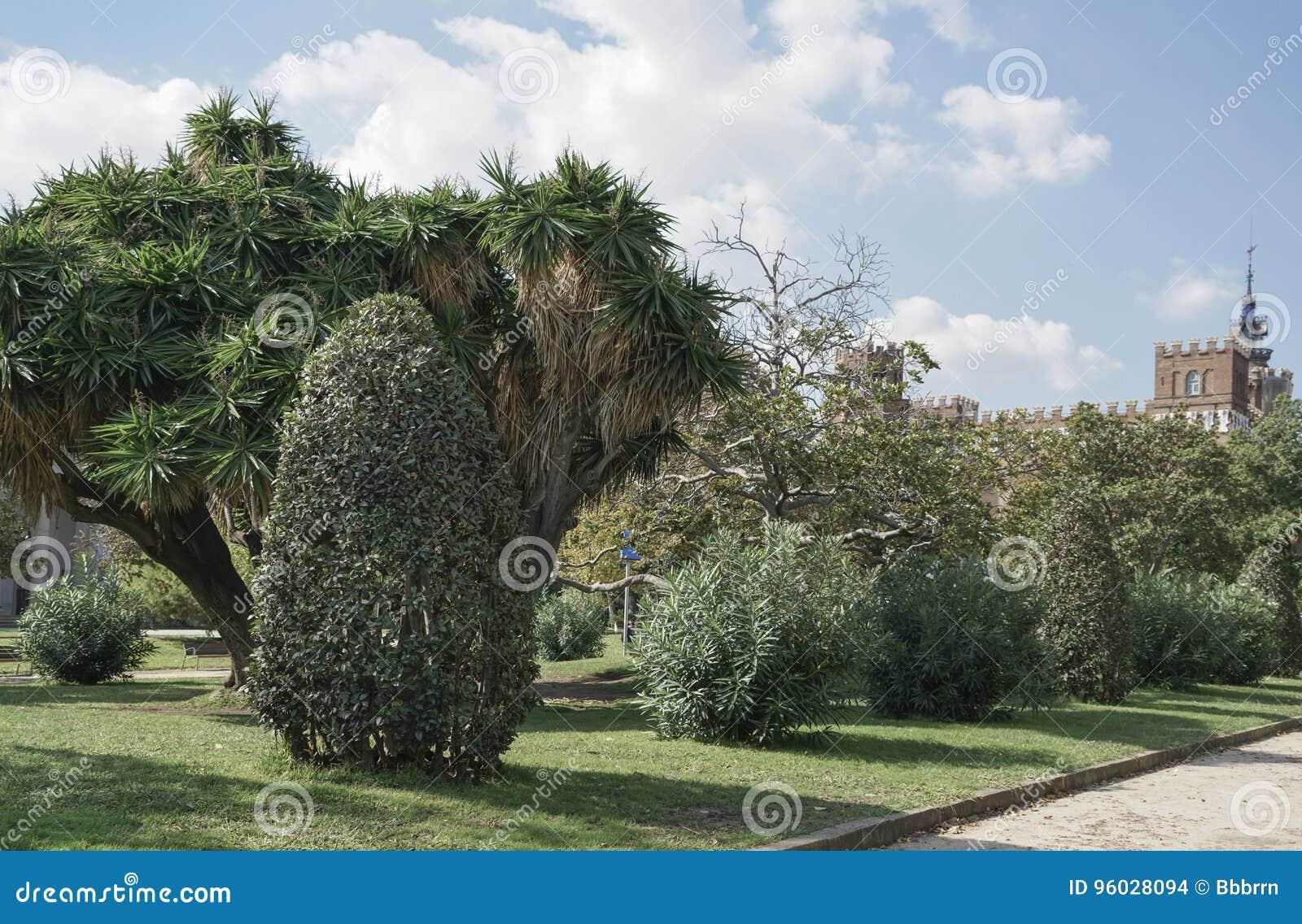 Park w Hiszpania podczas lata