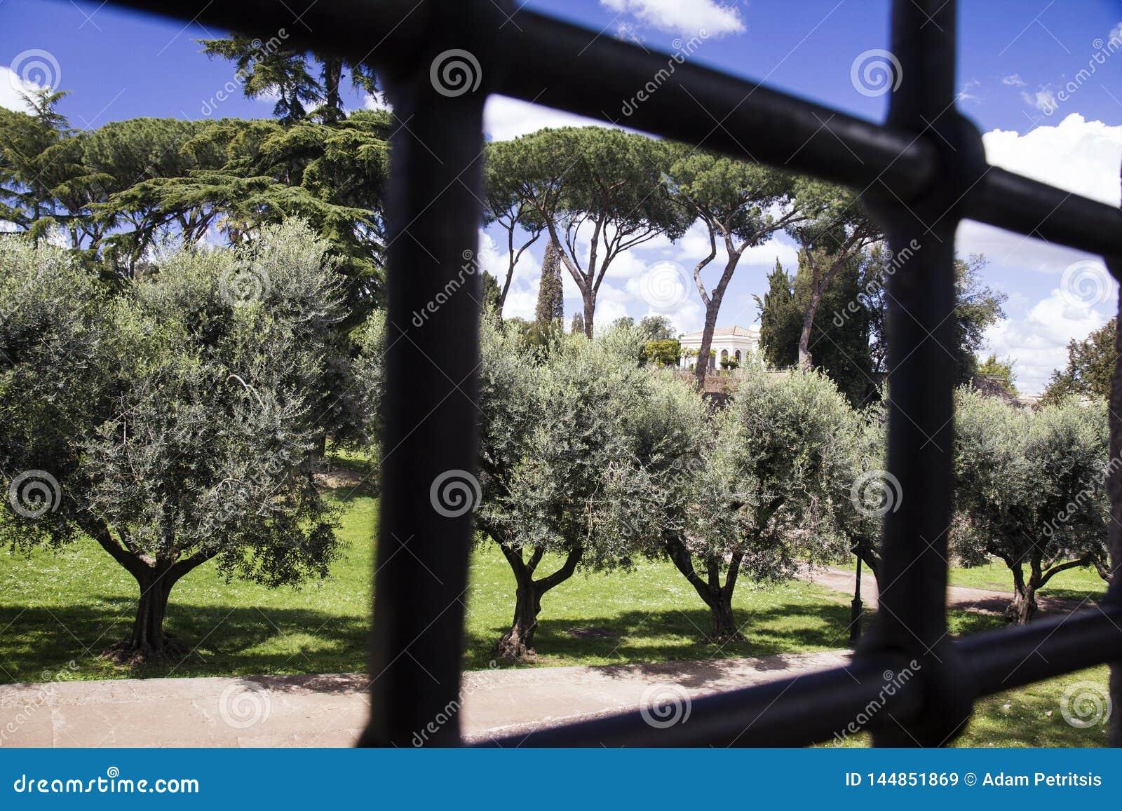 Park w Palatino dziejowym terenie Rzym, przez stalowych barów brama