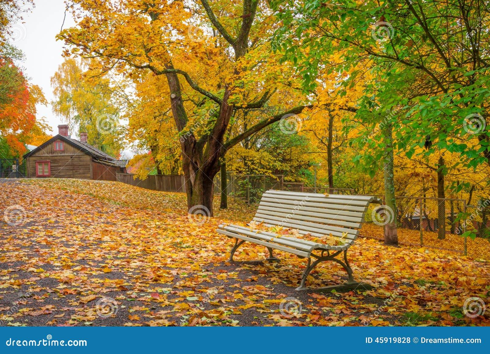 Parkera landskap i oktober