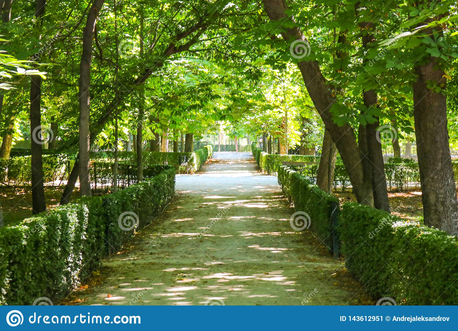 Parkera Parque de El Retiro, Madrid, Spanien