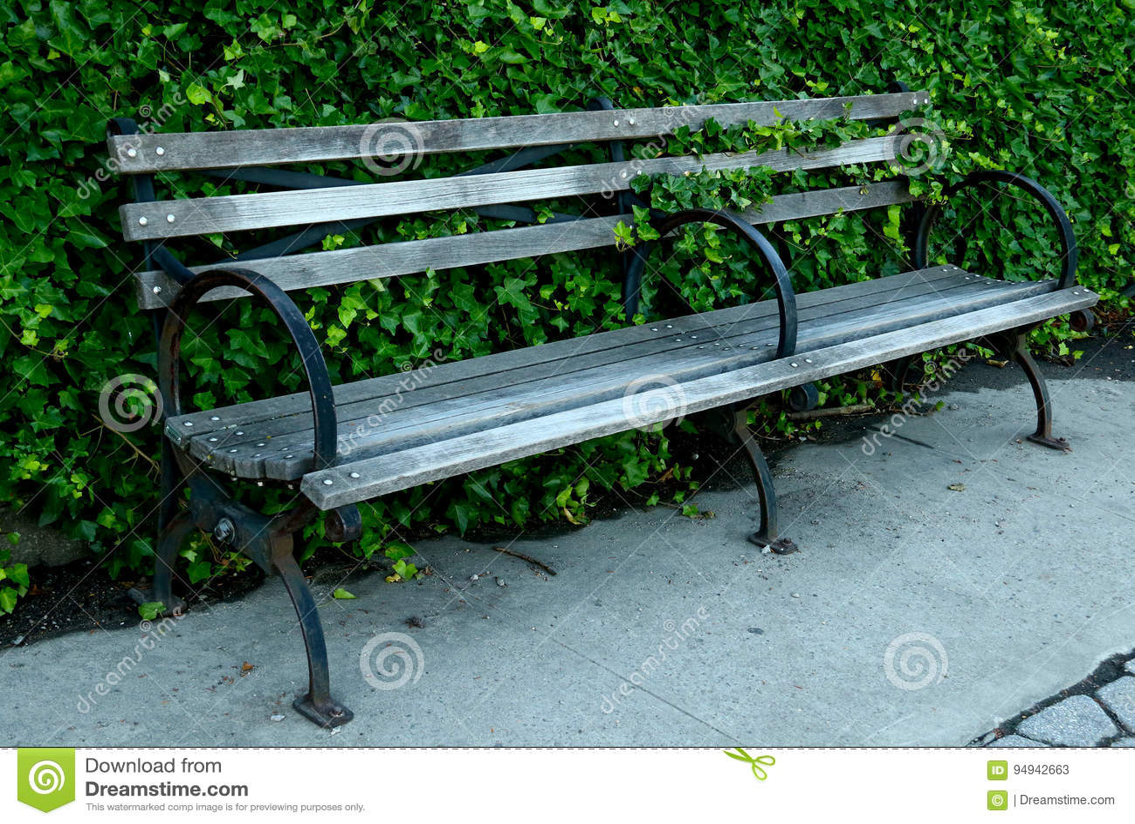 Parkowa ławka z bluszczy stojakami na chodniczku
