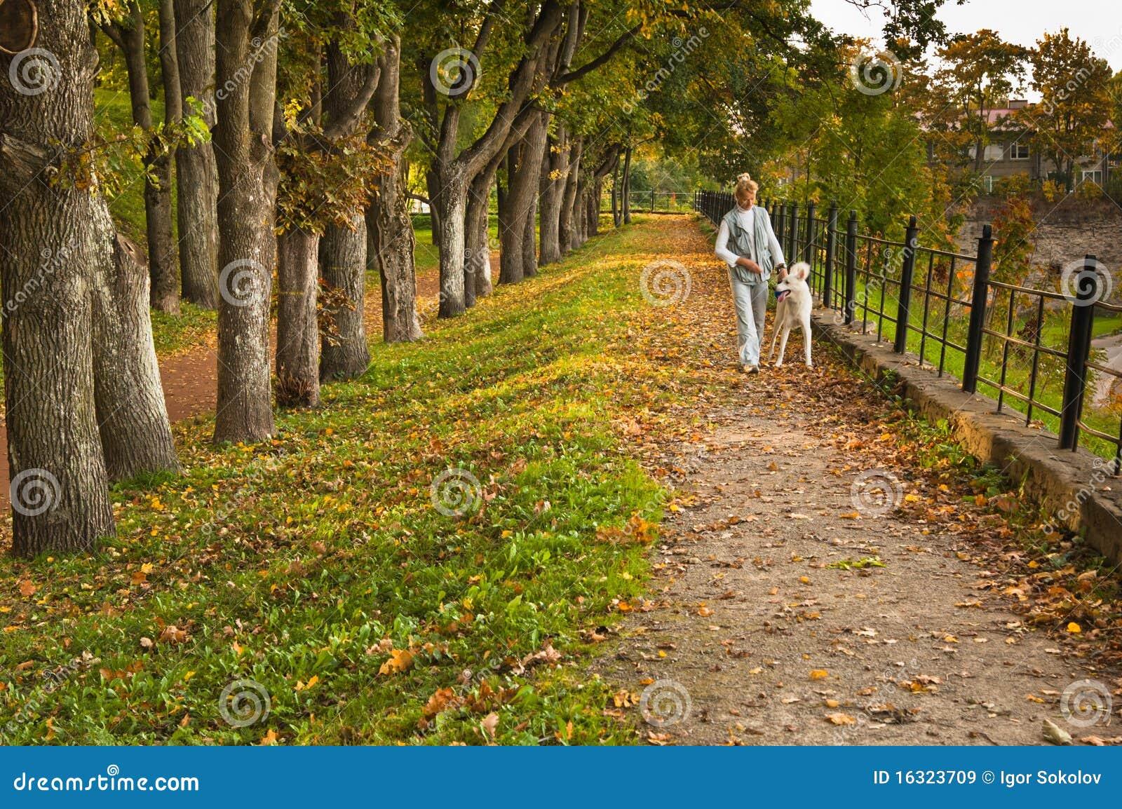Parkowa jesień ścieżka