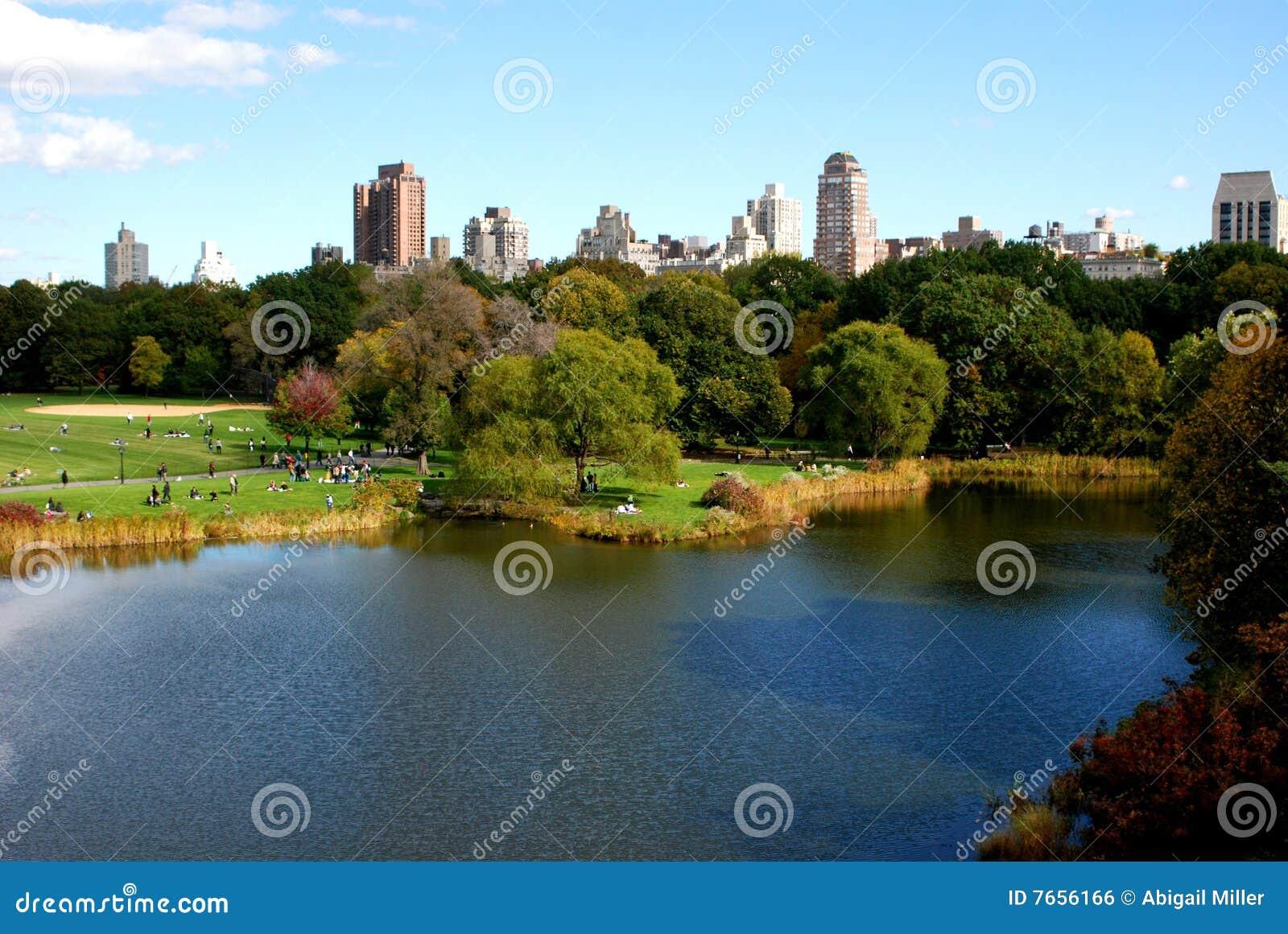 Parkowy miasta społeczeństwo