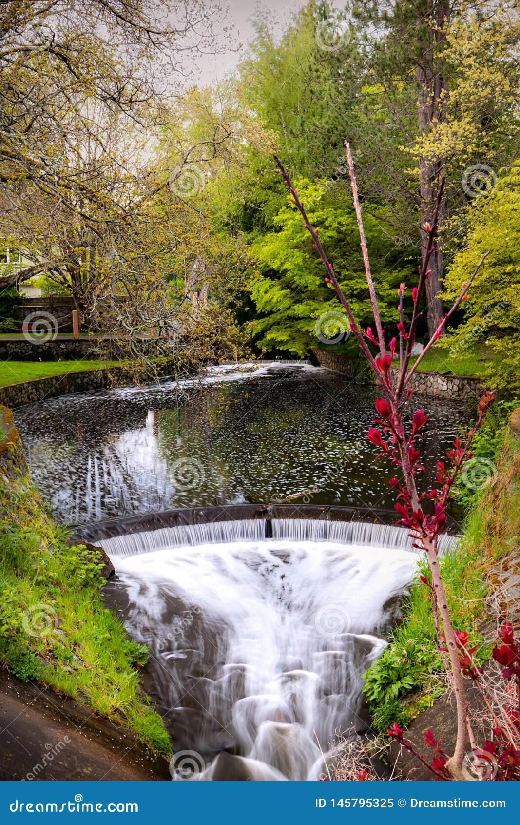 Parque con la cascada en suburbios de Victoria Island, Canadá