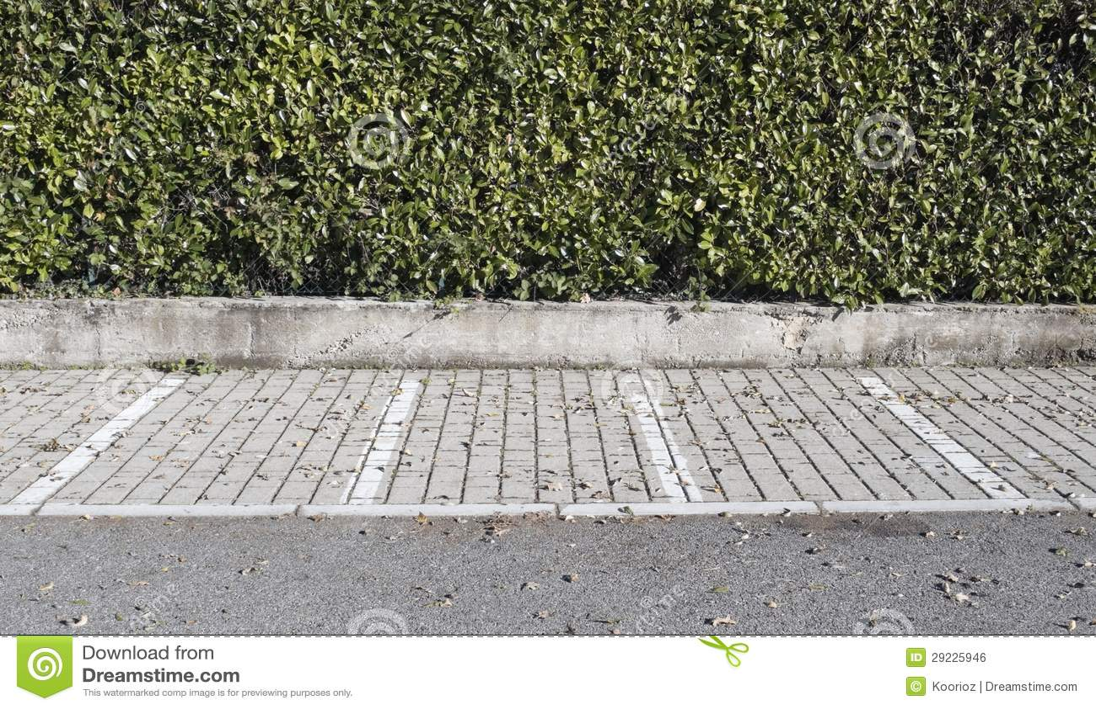 Download Parque de estacionamento foto de stock. Imagem de folhas - 29225946
