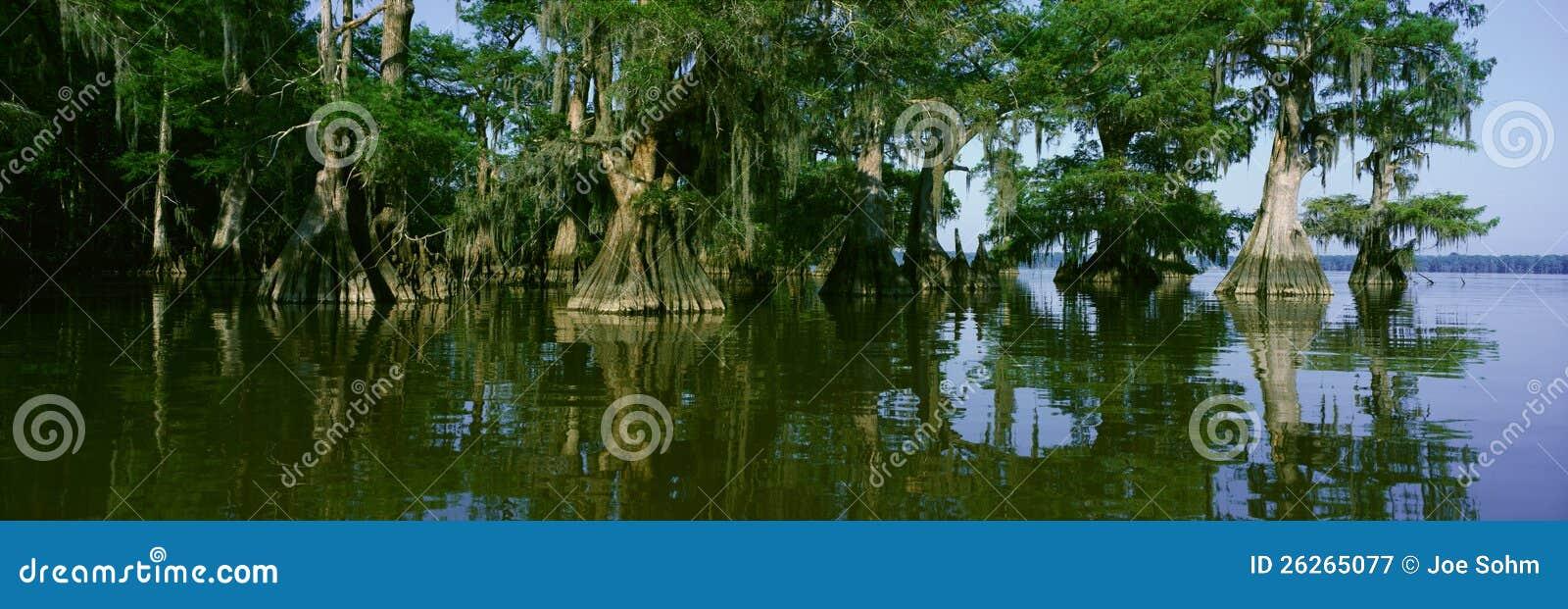 Parque de estado de Fausse Pointe do lago