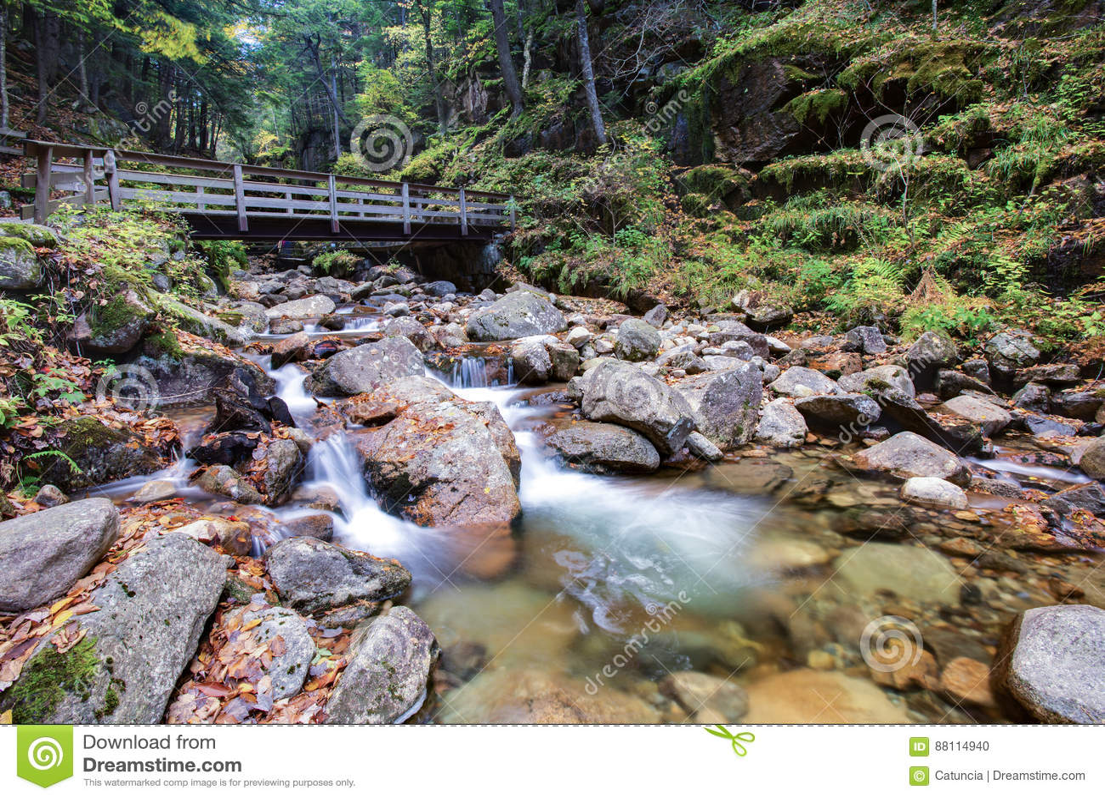 Parque de estado de la muesca de Franconia, New Hampshire, los E.E.U.U.