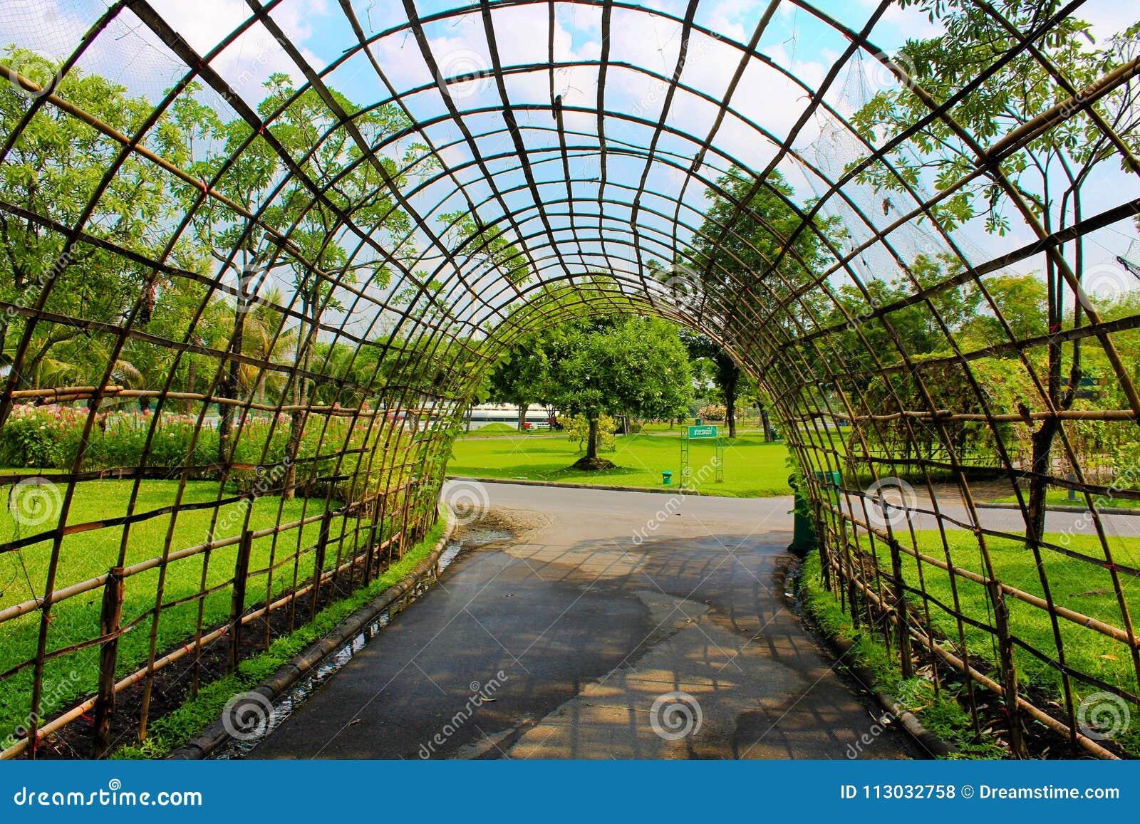 Parque de Lumpini que ajardina en Bangkok, Tailandia