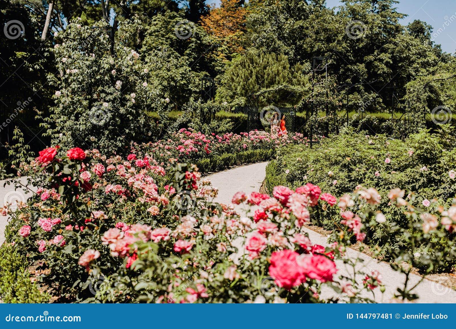 Parque del Buen Retiro en Madrid, España