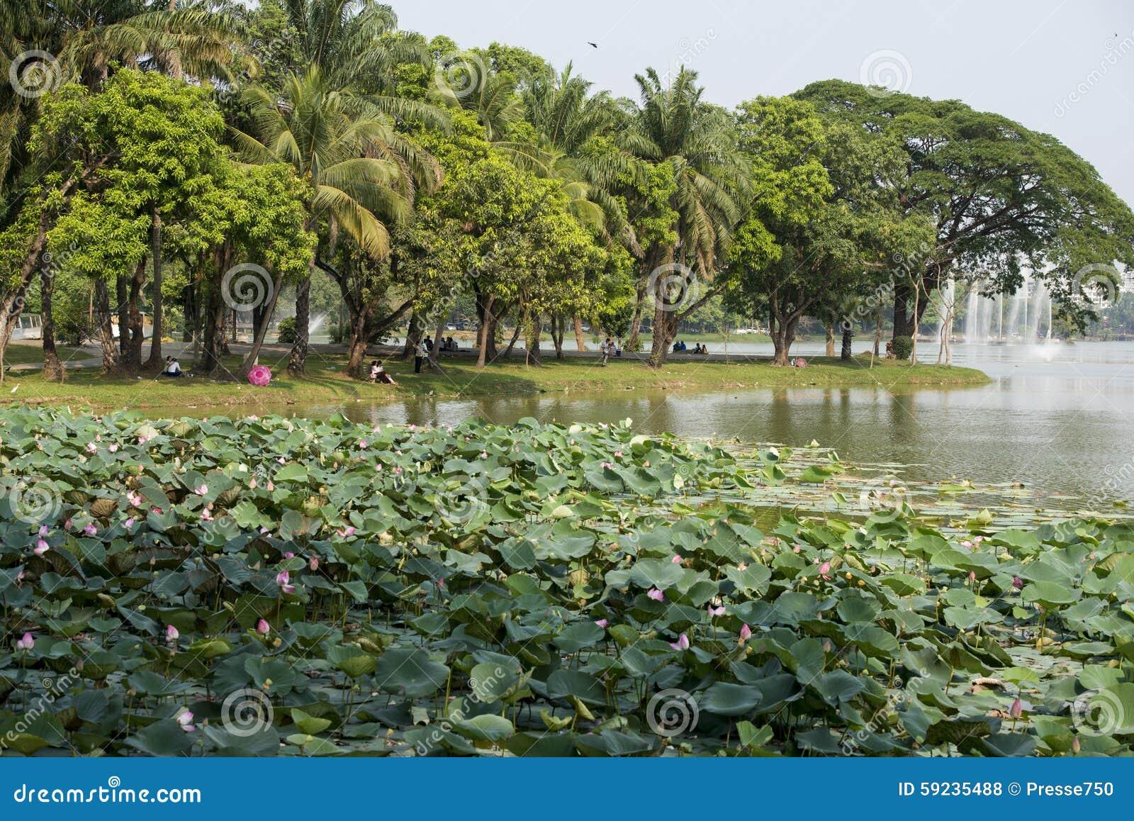Download PARQUE DEL LAGO DE ASIA MYANMAR RANGÚN KANDAWGYI Foto de archivo - Imagen de wetland, agua: 59235488