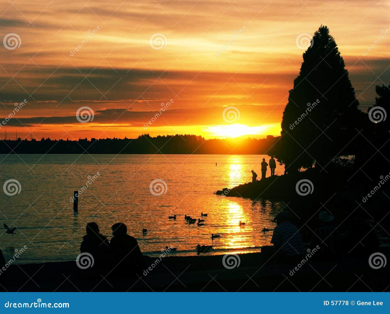 Parque del puerto deportivo en la puesta del sol