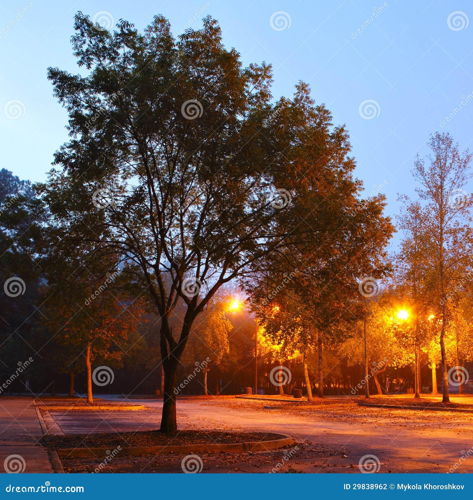 Parque do amanhecer