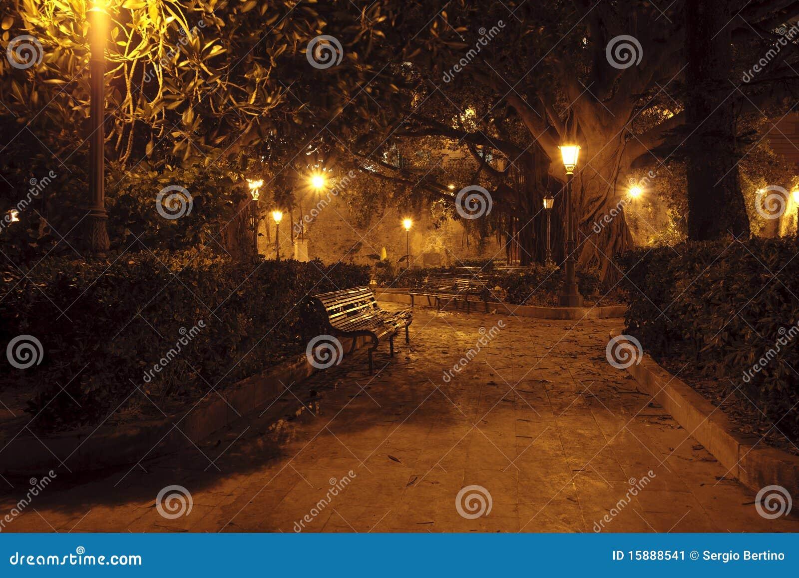 Parque en la noche