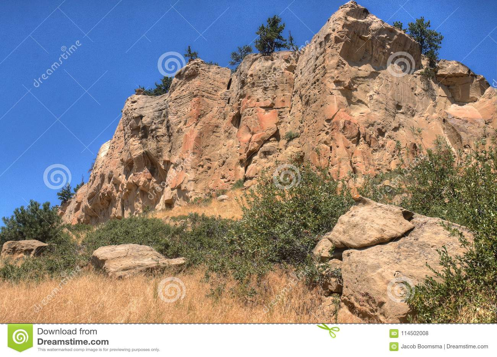 Parque estadual fora dos faturamentos, Montana da imagem gráfica no verão