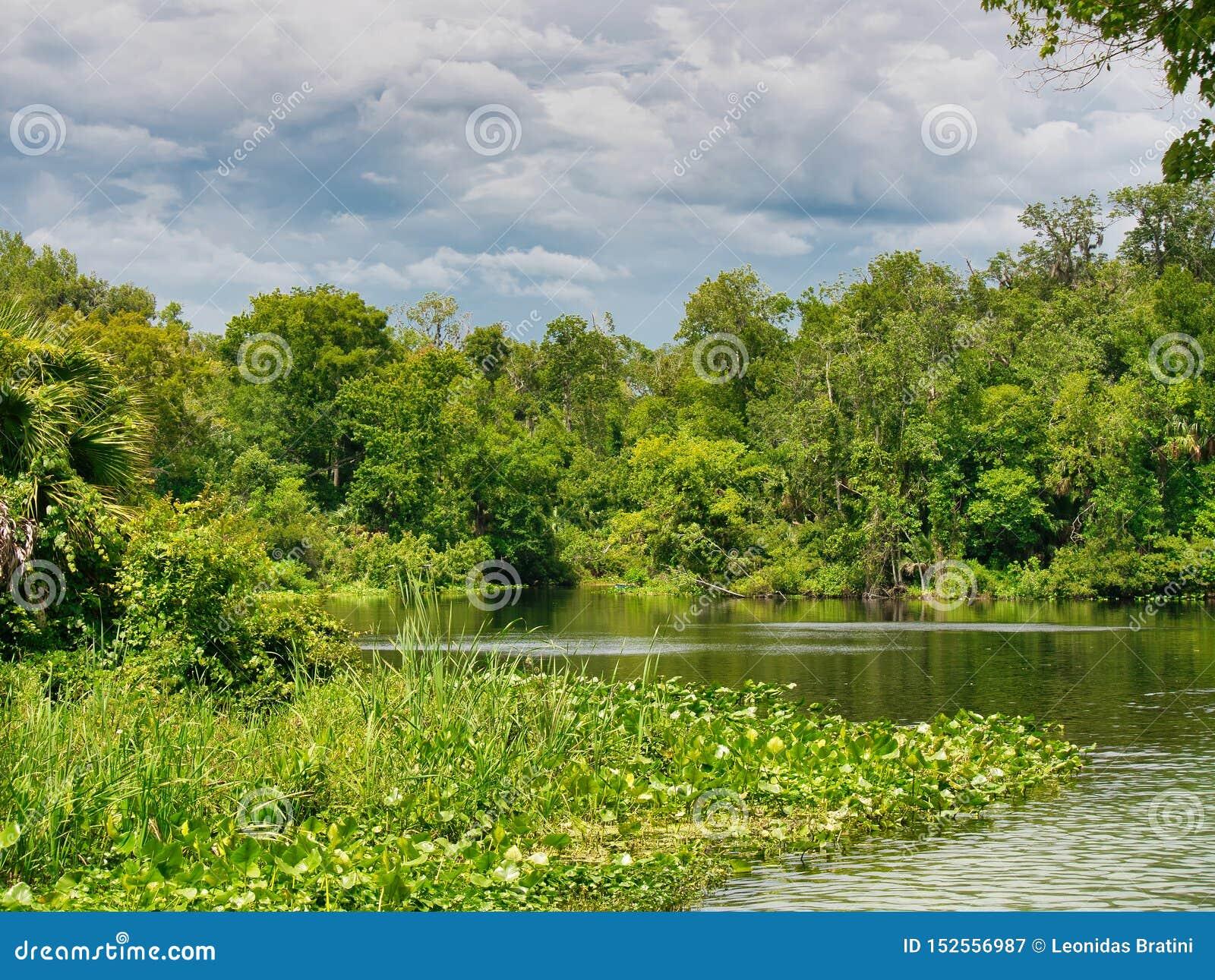 Parque estadual no coração de Florida central