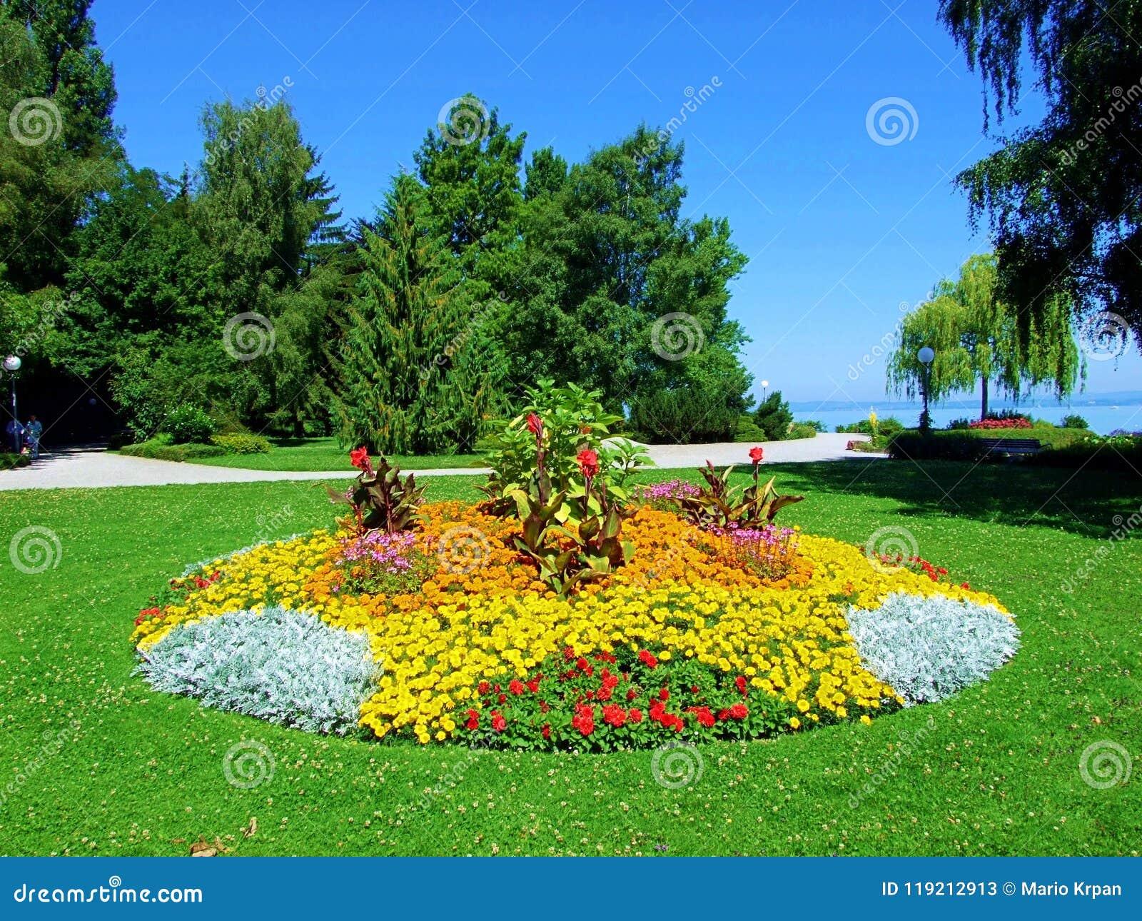Parque jard n paisaje hierba verde naturaleza rbol for Arboles para plantar en verano