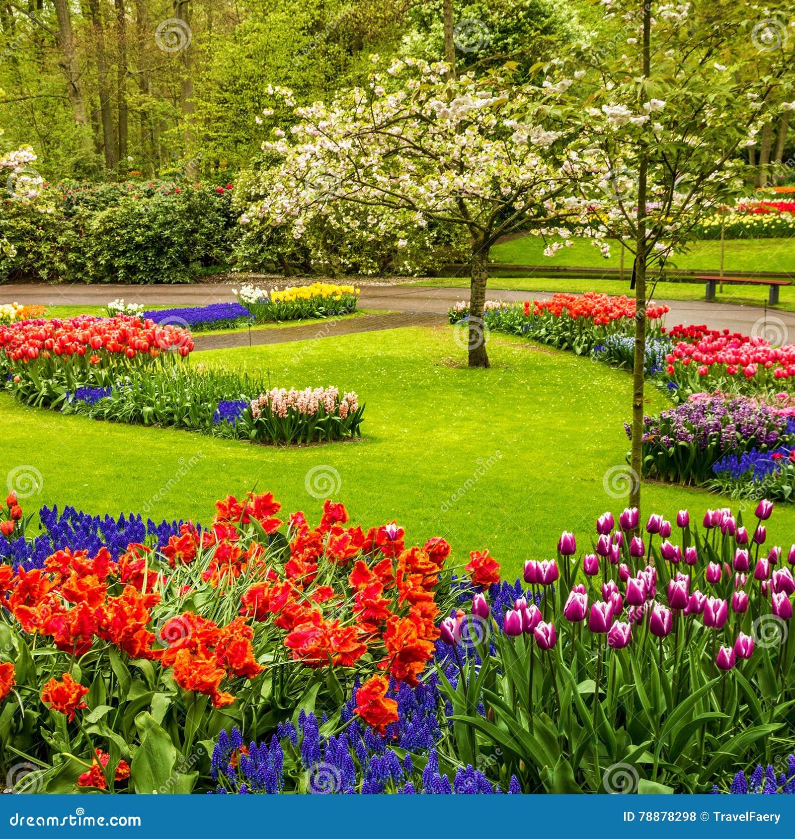 Jardines de flores top jardines de flores with jardines for Parques con jardines