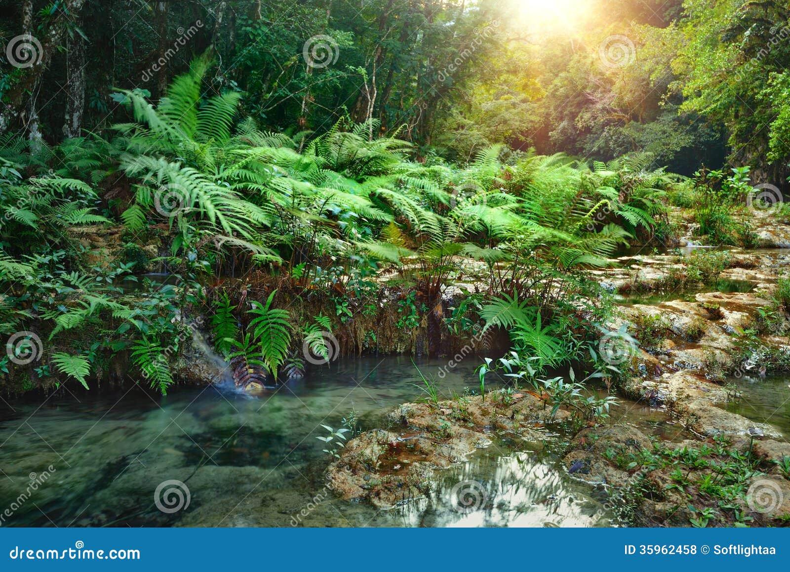 Parque nacional de las cascadas en Guatemala Semuc Champey en la puesta del sol.