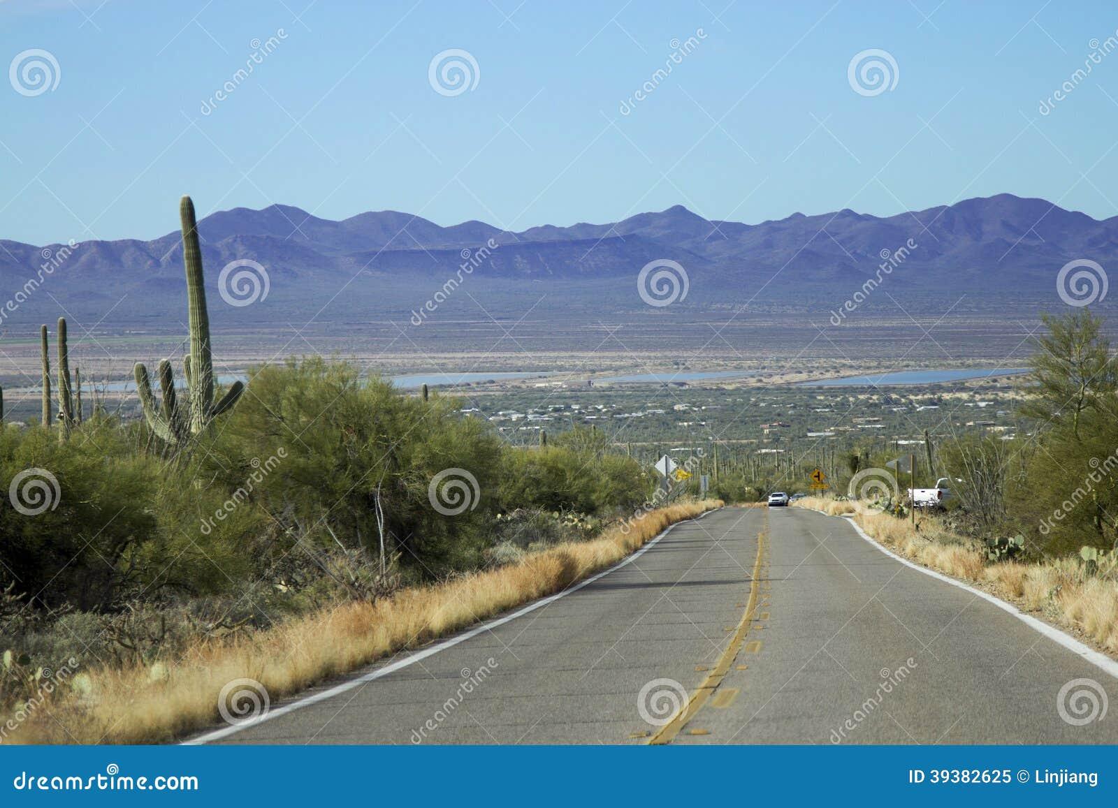 Parque nacional de Saguaro