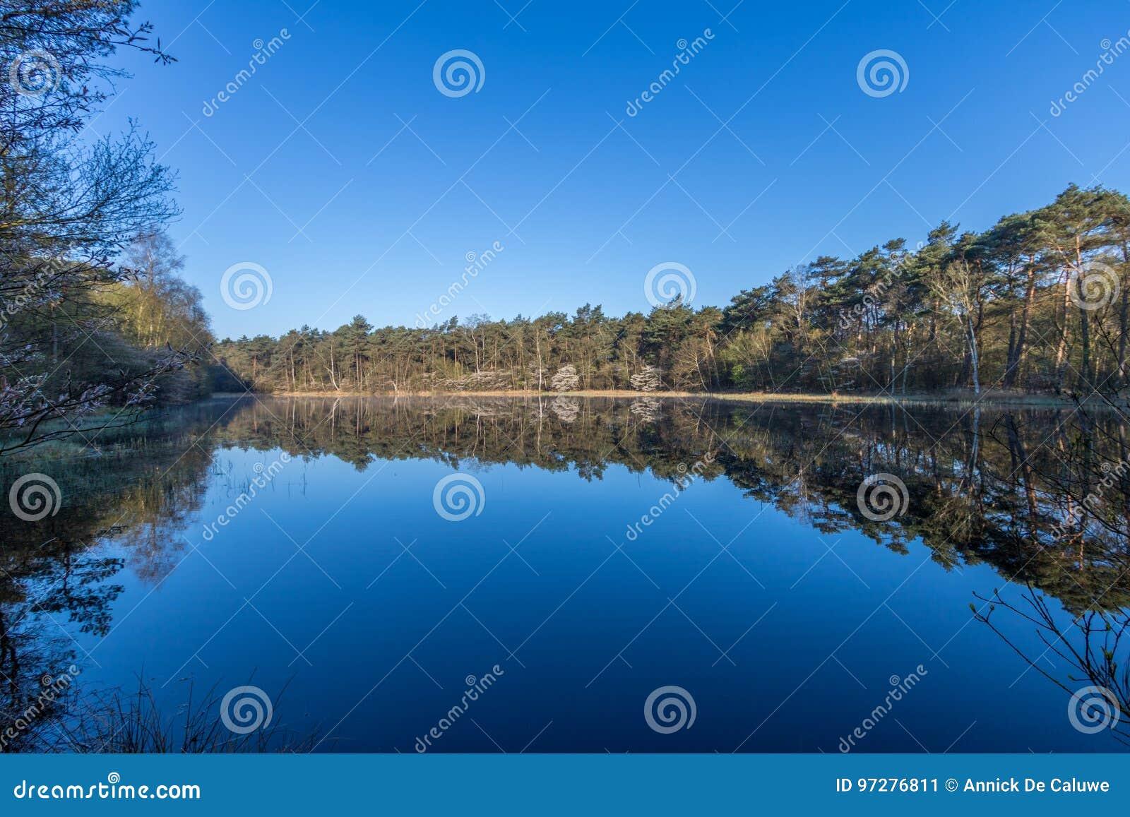 Parque nacional Dwingelderveld de Drente