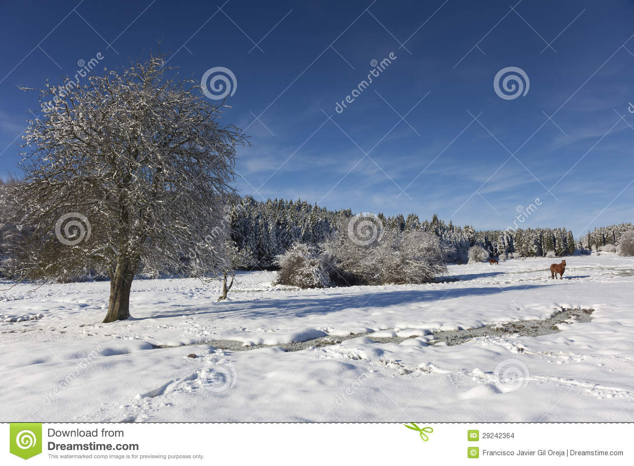 Download Parque Natural De Gorbea, Alava Foto de Stock - Imagem de europa, spain: 29242364