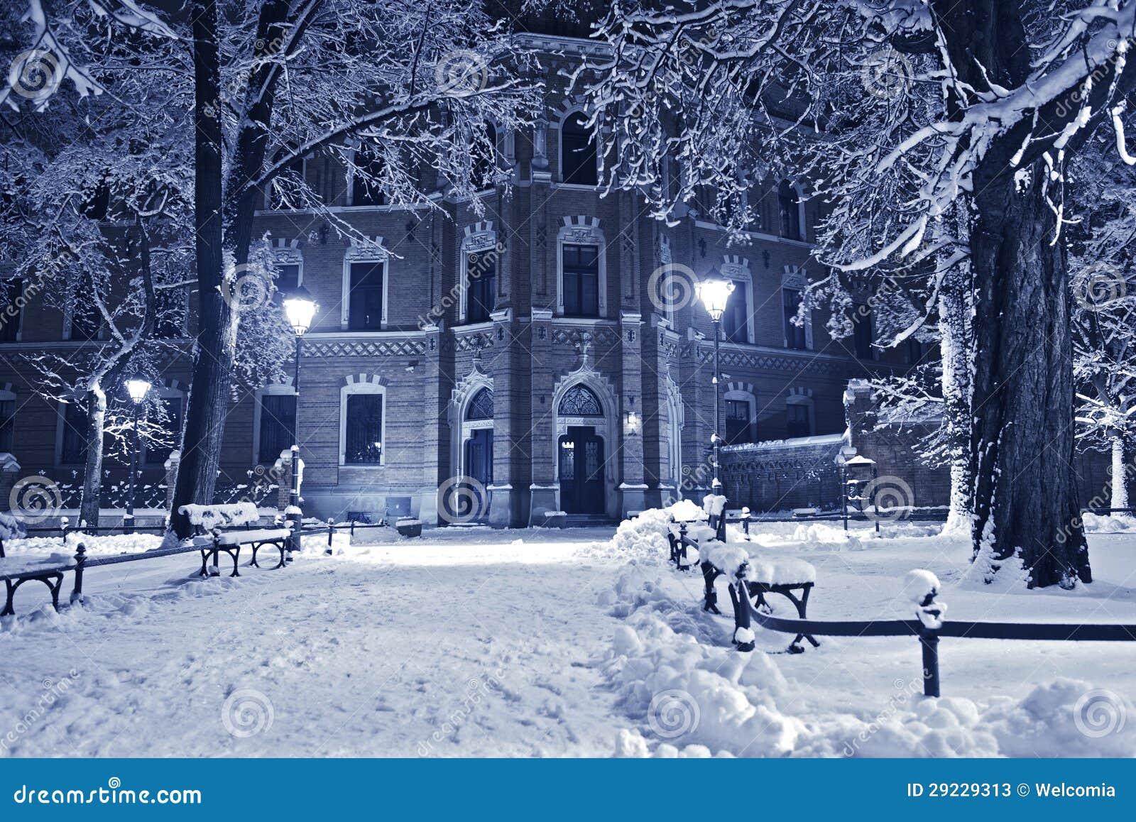 Download Parque velho no inverno imagem de stock. Imagem de poland - 29229313