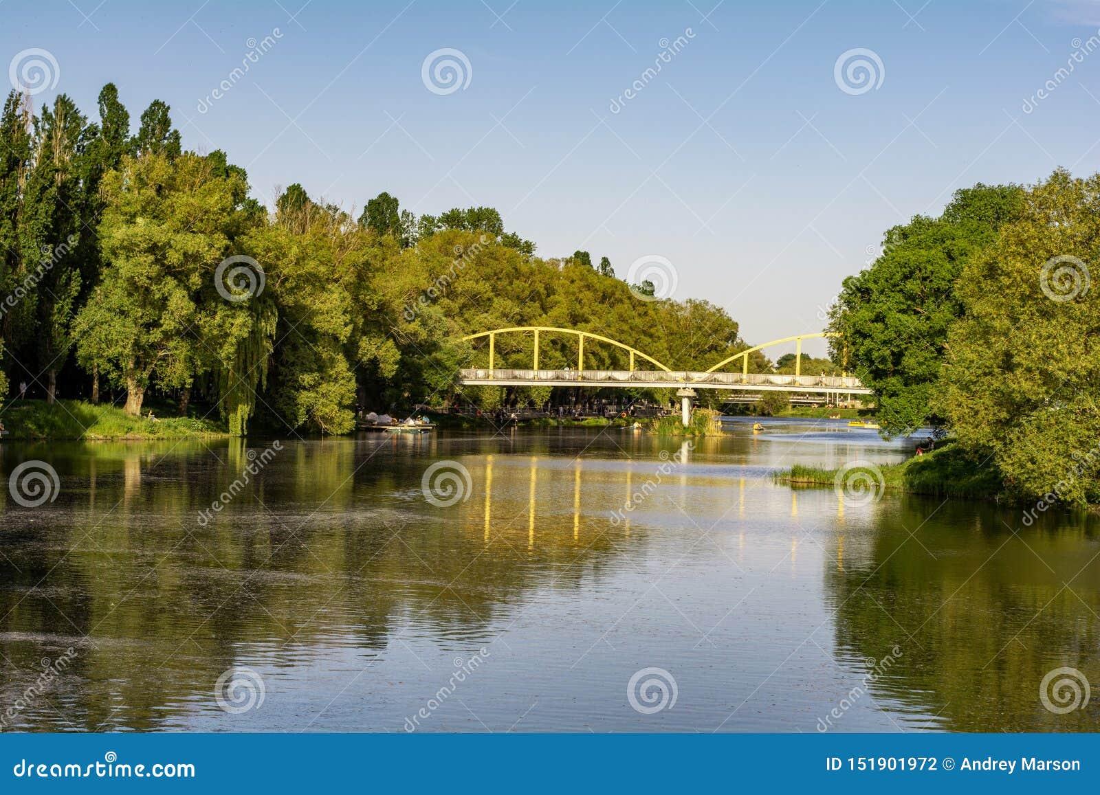 Parque verde com árvores e rio Feriado ensolarado