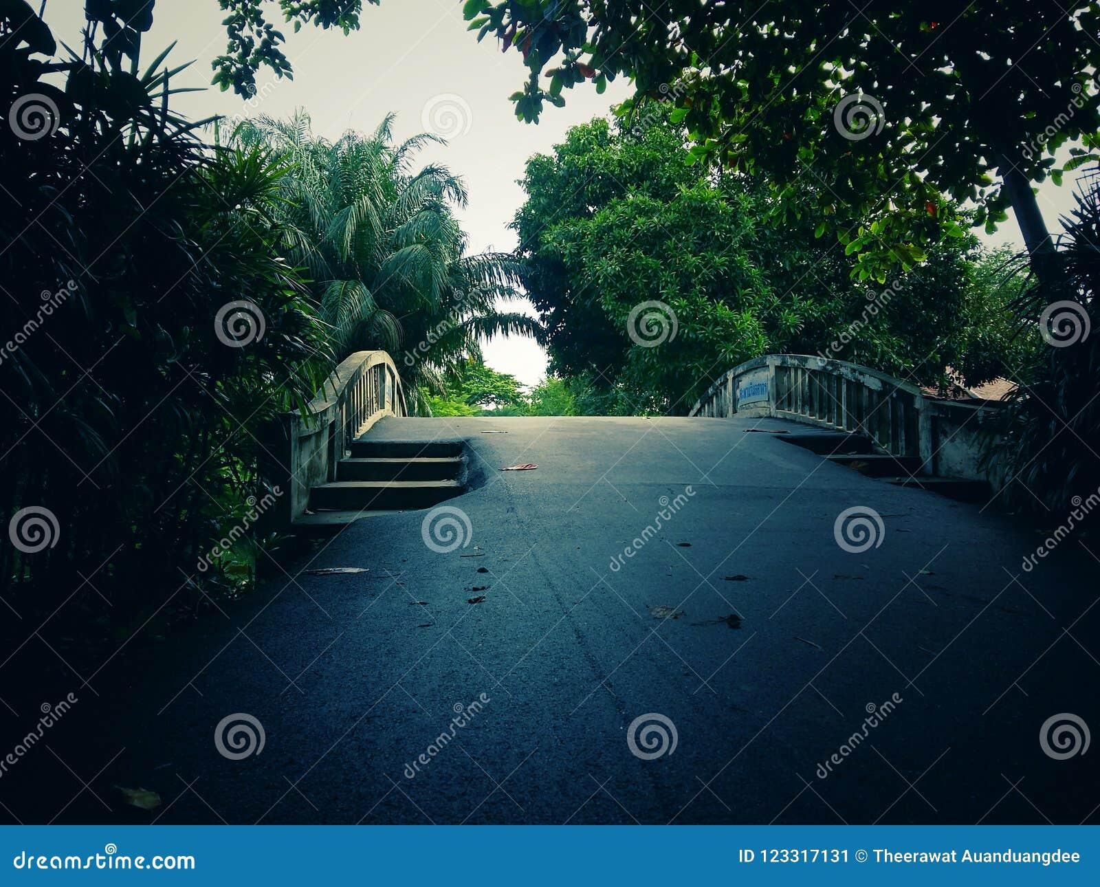 Parques Públicos Y Muchos árboles Verdes Con Los Puentes d5e44fd73e50b