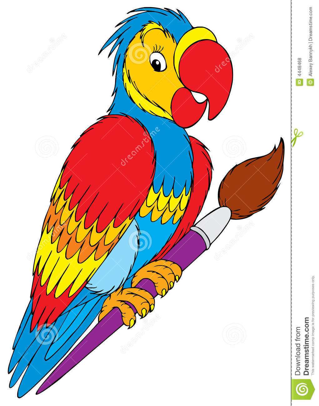 parrot royalty free stock photos image 4448468