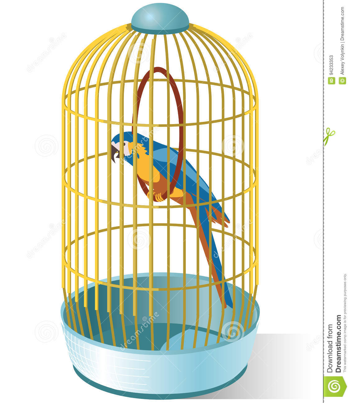 parrot in a cage stock vector illustration of parrot