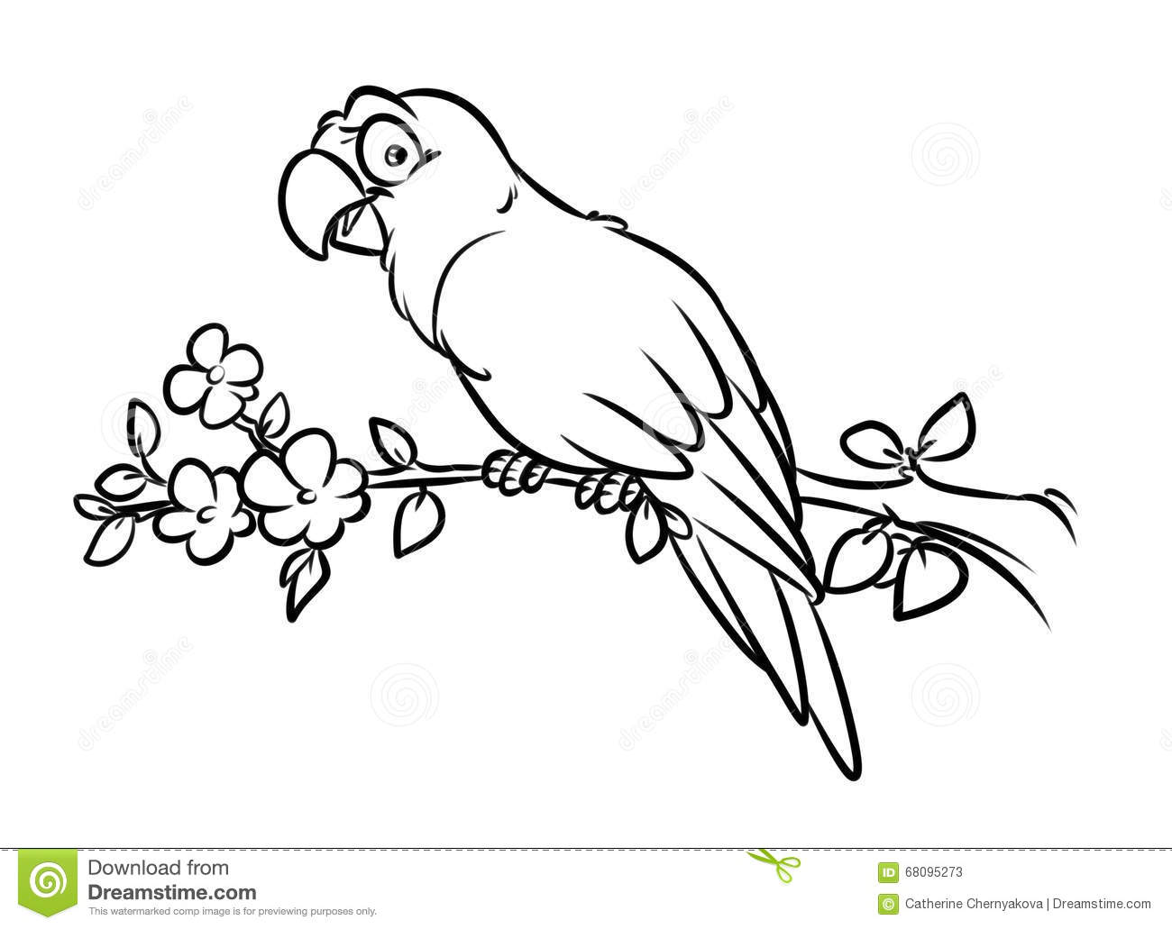 Parrot Coloring Pages Cartoon Illustration Stock Illustration ...