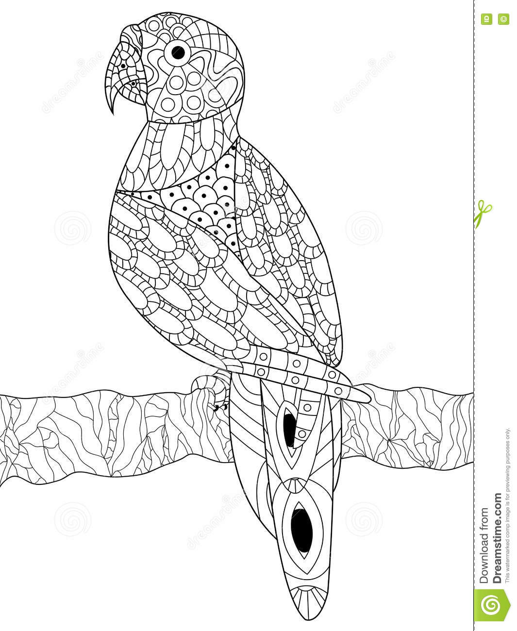 Parrot Coloring Vector For Adults Stock Vector