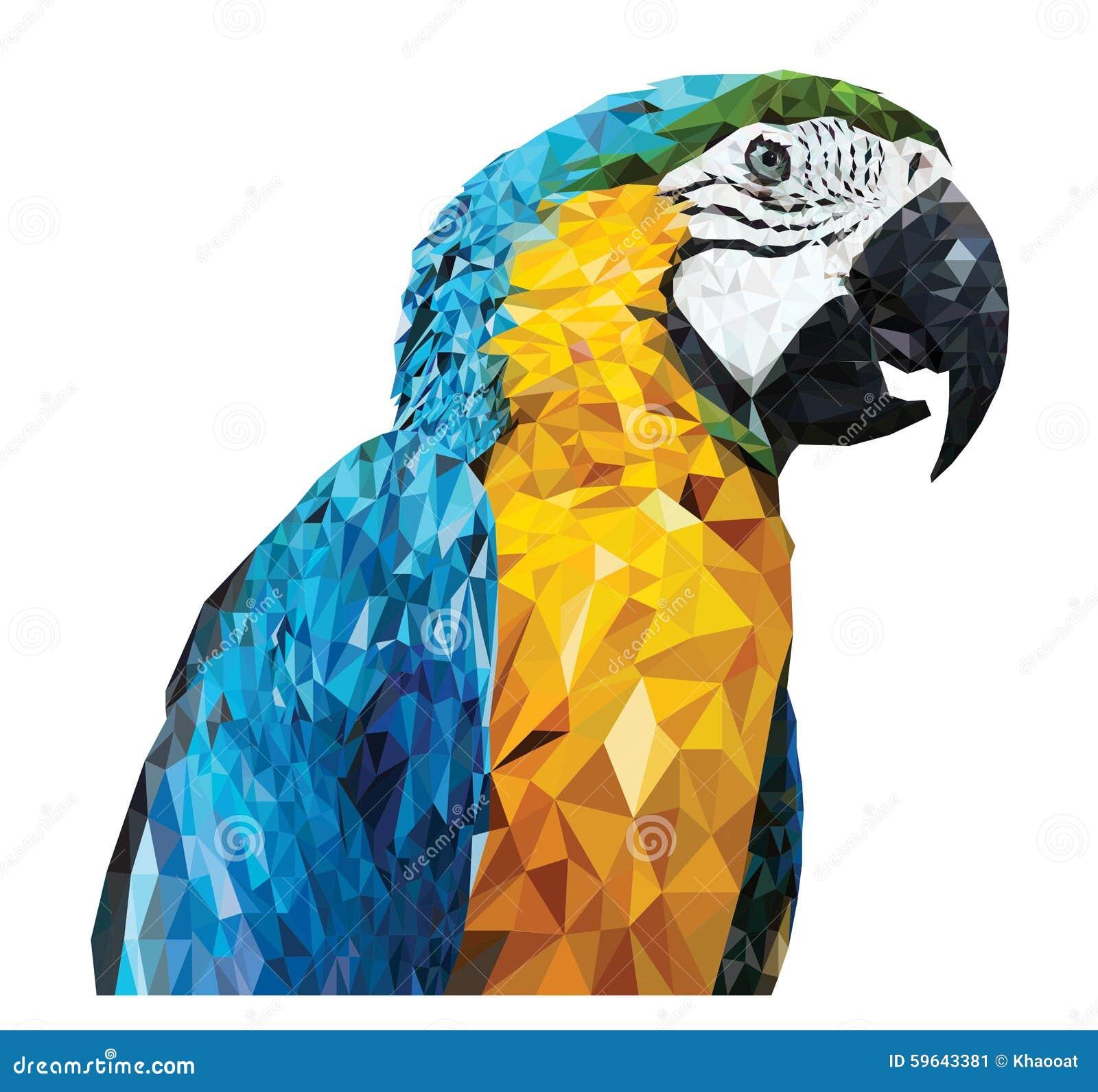 Parrot_Low多设计