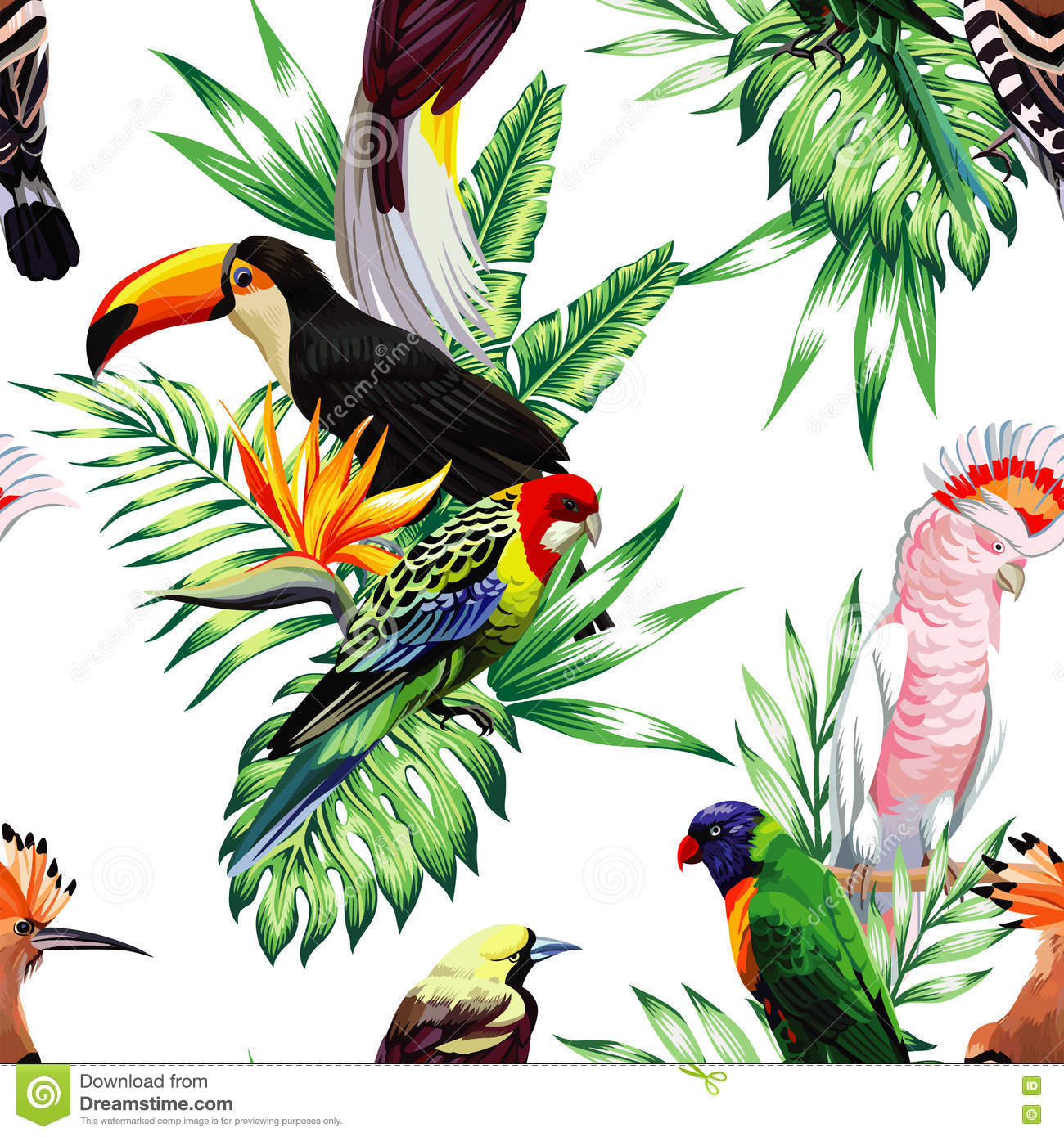 parrot maccaw and toucan on branch stock vector image