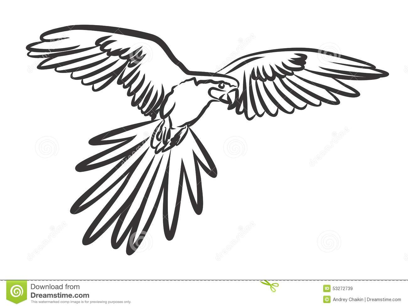 Birds Coloring Pages likewise Angry Birds Coloring Pages Pdf moreover Fabulous Floral Frenzy Embroidery Transfer Patterns additionally How To Draw A Golden Pheasant Step By Step together with Coloring Pages Online. on pheasant coloring pages