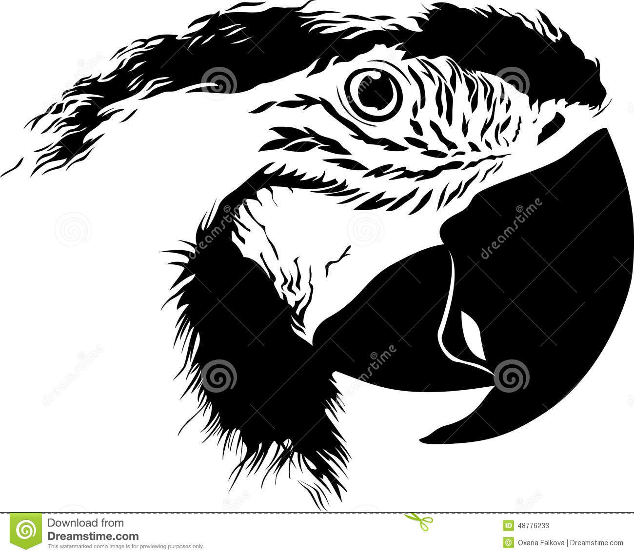 Parrot stock vector. Illustration of contour, isolated ...