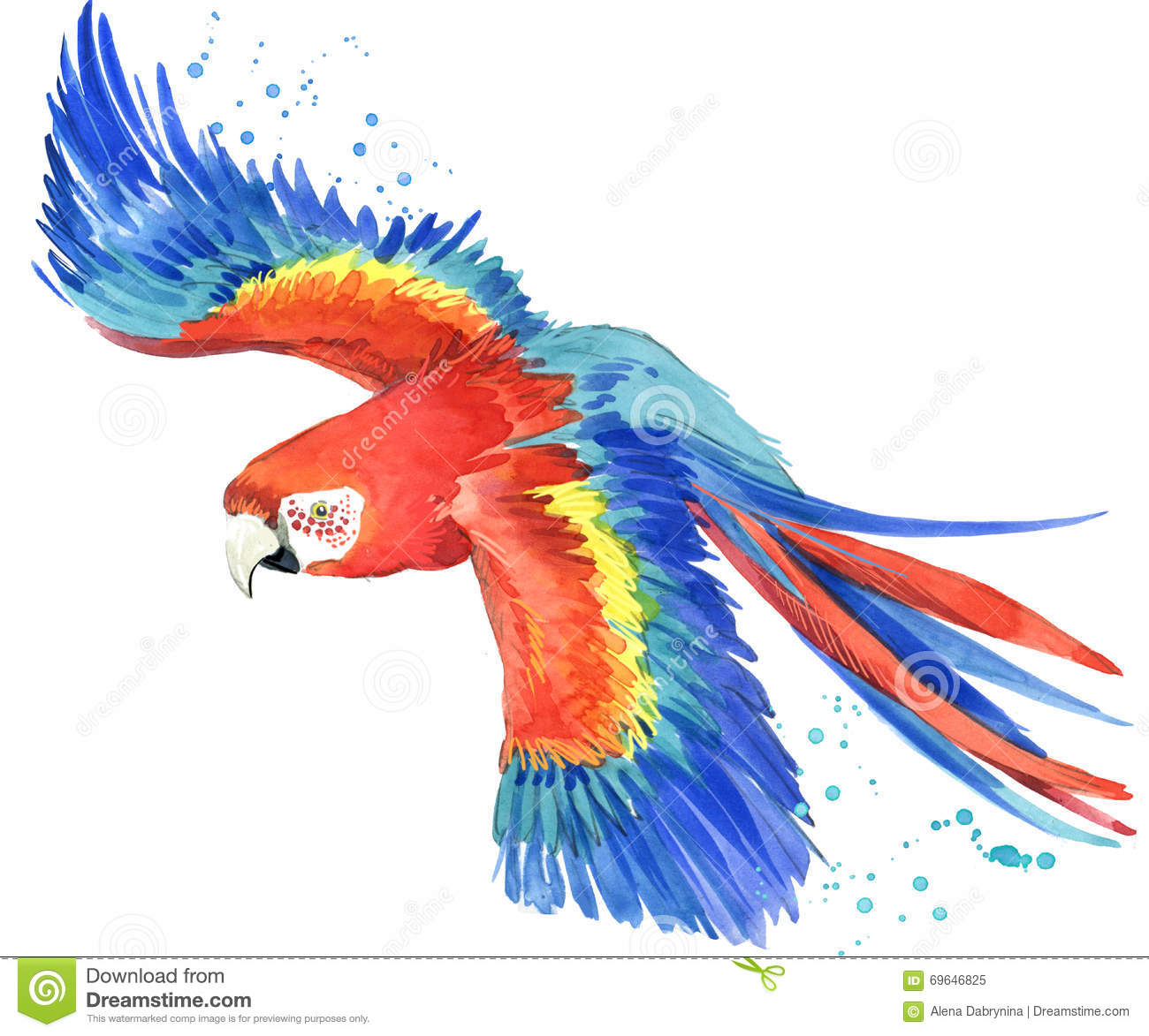 How To Draw Parrot  Draw Colorful Parrot  Learn Cartoon Drawings  Arts for kids  Digital Art