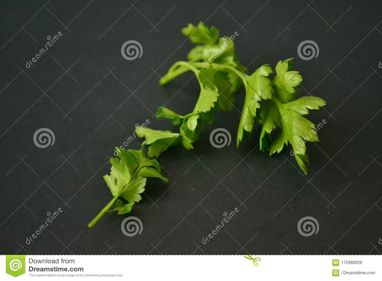 Parsley, mint, dill and onion
