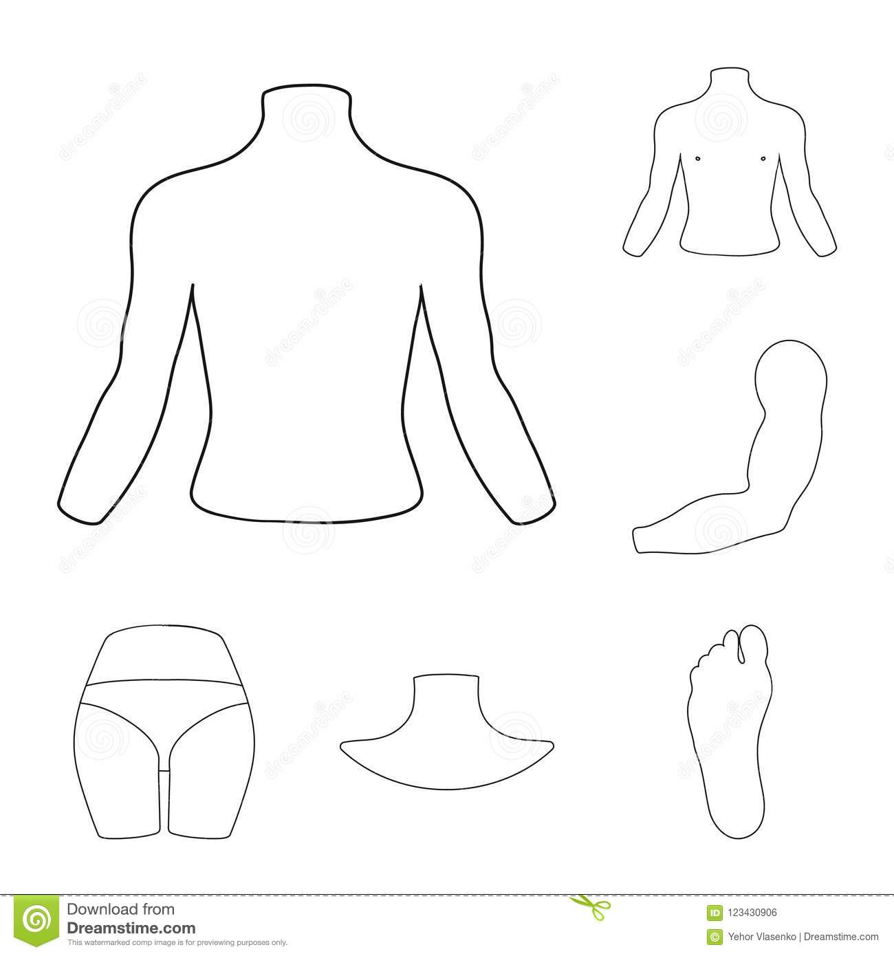 Part Of The Body Limb Outline Icons In Set Collection For Design