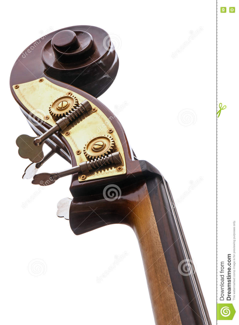 Part of a double bass, musical instrument of the violin family solated on a white background
