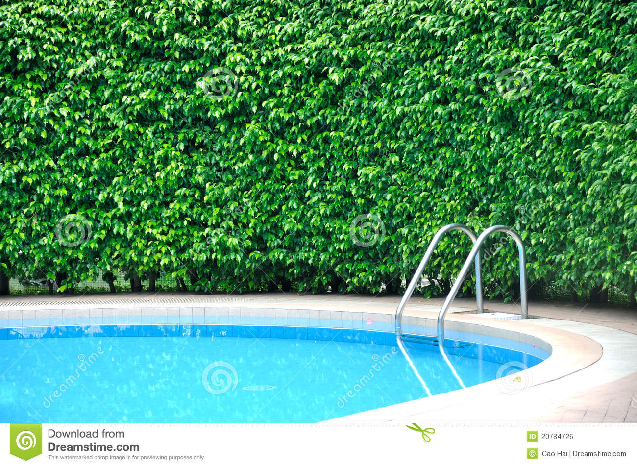 Fence by the pool with trees in garden backdrop